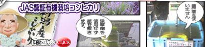 JAS認証有機栽培コシヒカリのページへ