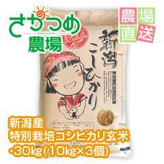 平成29年新潟産特別栽培コシヒカリ玄米 30kg(10kg×3個)