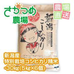 平成29年新潟産特別栽培コシヒカリ精米30kg(5kg×6個)