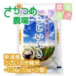 画像1: 令和元年新米!新潟産こしいぶき精米 10kg(5kg×2個)