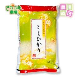 画像1: 令和2年新米!新潟産特別栽培コシヒカリ精米15kg( 5kg×3個)