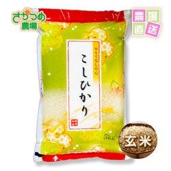 画像1: 令和2年新米!新潟産特別栽培コシヒカリ玄米5kg